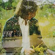 Ryley Walker – Primrose Green Cover