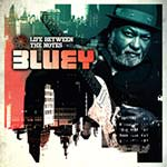 Bluey – Life Between The Notes (Cover)