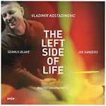 Vladimir Kostadinovic – The Left Side Of Life (Cover)