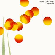 Thomas Lüthi's Biwak – Springfall (Cover)
