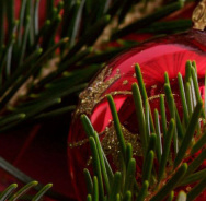 Weihnachten & Neujahr