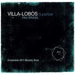 Pau Brasil – Villa-Lobos Superstar (Cover)