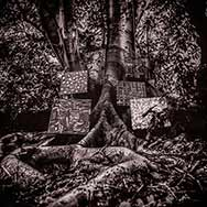 Kamasi Washington 'Harmony Of Difference'