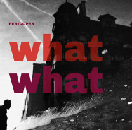 Pericopes – What What