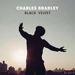 Charles Bradley – Black Velvet (Cover)