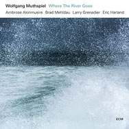 Wolfgang Muthspiel – Where The River Goes (Cover)