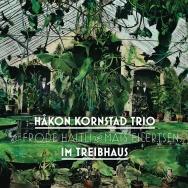 Håkon Kornstad Trio – Im Treibhaus (Cover)