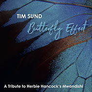 Tim Sund – Butterfly Effect (Cover)