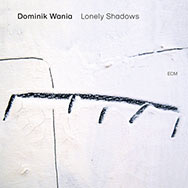 Dominik Wania – Lonely Shadows (Cover)