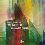 Hans Lüdemann Trio Ivoire XX – Enchanted Forest (Cover)