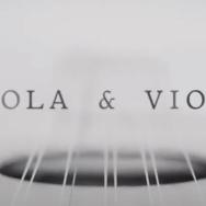 Viola E Violão