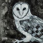 Cosmo Sheldrake 'Wake Up Calls'