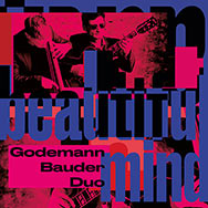 Godemann Bauder Duo – Beautiful Mind (Cover)