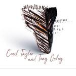 Cecil Taylor & Tony Oxley – Birdland Neuburg 2011 (Cover)
