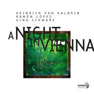 Kalnein / Lopéz / Schwarz – A Night In Vienna (Cover)