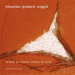 Biondini Godard Niggli - What Is There What Is Not