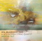 Emil Brandqvist Trio & Sjöströmska String Quartet - Breathe Out (Cover)