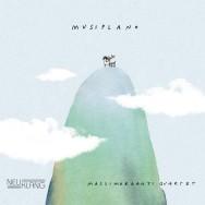 Massimorganti Quartet - Musiplano