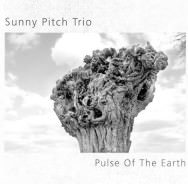 Sunny Pitch Trio - Pulse Of The Earth