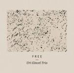 Uri Gincel Trio – Free (Cover)