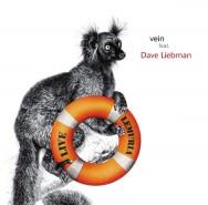 Vein & Dave Liebman - Lemuria – Live (Cover)